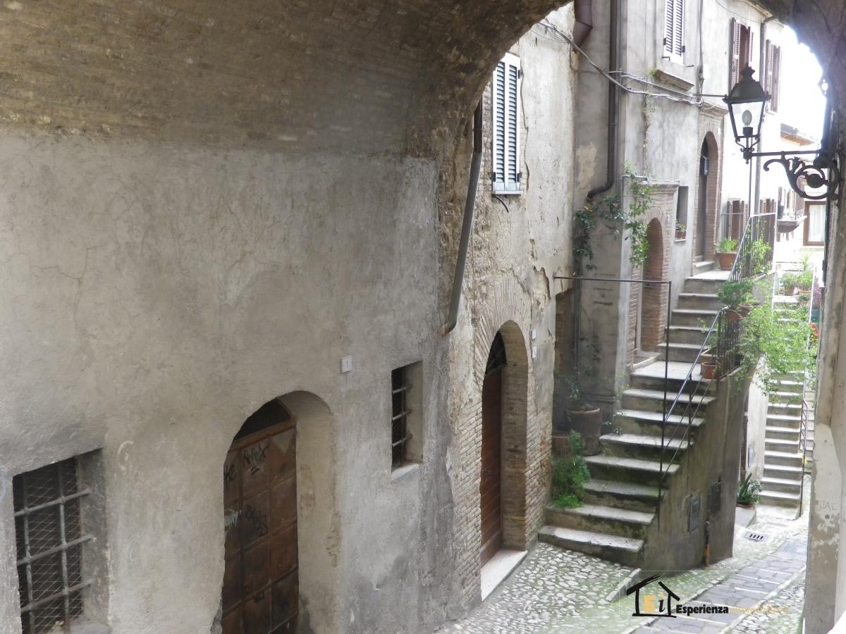Appartamento affitto Poggio Mirteto (RI) - 3 LOCALI - 60 MQ